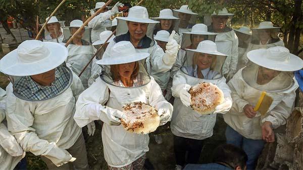 İzmir'den gelip Van'da bal hasadı yaptılar
