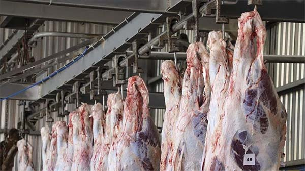 Et ve et ürünleri alınacak