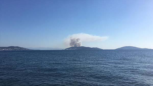 Heybeliada'daki orman yangını kontrol altına alındı