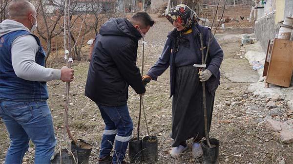 Keçiören'deki çiftçilere meyve fidanı desteği