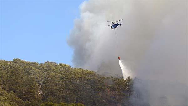 Tarım ve Orman Bakanı Pakdemirli: Kumluca'daki yangın kontrol altına alındı