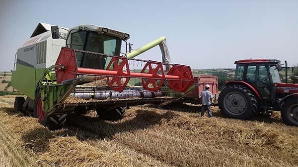 Türkiye'nin önemli hububat merkezlerinden Edirne'de buğday hasadı sona erdi