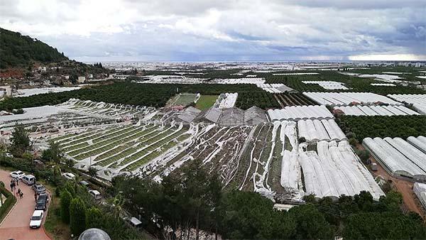 Afetleri yaşayan çiftçi ürününü sigortalattırıyor