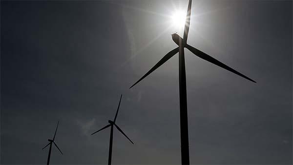 Ege'nin incisi İzmir'in 'rüzgarı güçlü'' esiyor