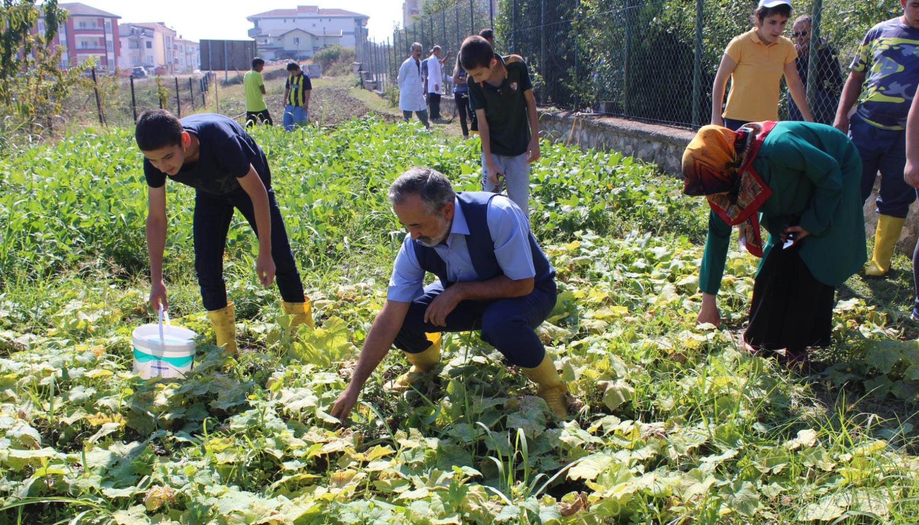 Engellerini sebze yetiştirerek aşıyorlar