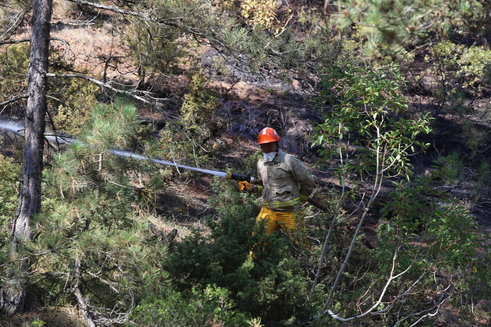Orman Yangını 13 Saatte Söndürülebildi