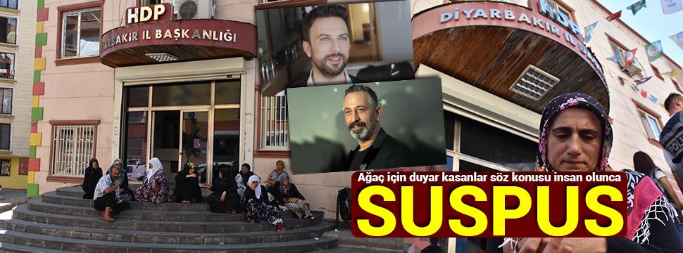 Sözde sanatçılar Diyarbakır anneleri ile ilgili görsel sonucu