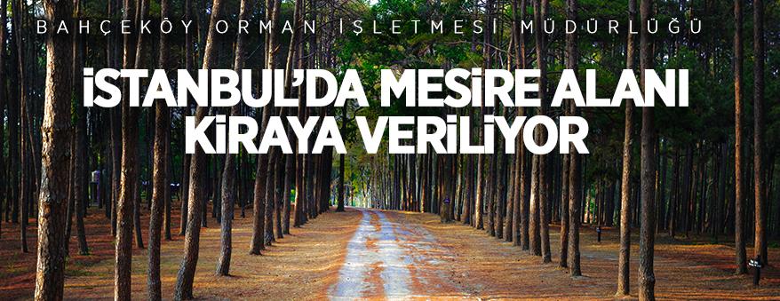 İstanbul'da C tipi mesire yeri işletme hakkı kiraya verilecek