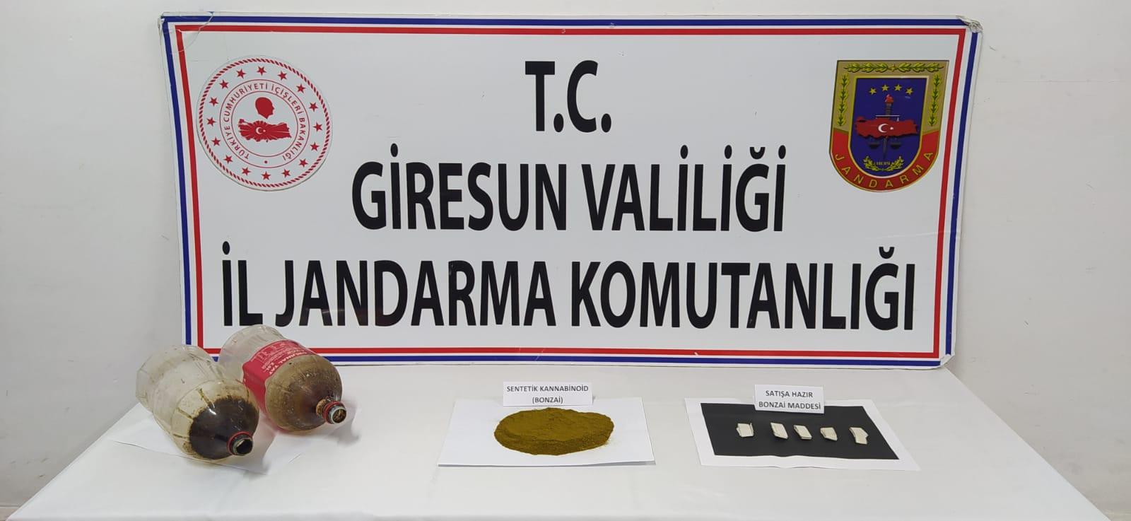 GÖRELE'DE 70 GRAM BONZAİ ELE GEÇİRİLDİ