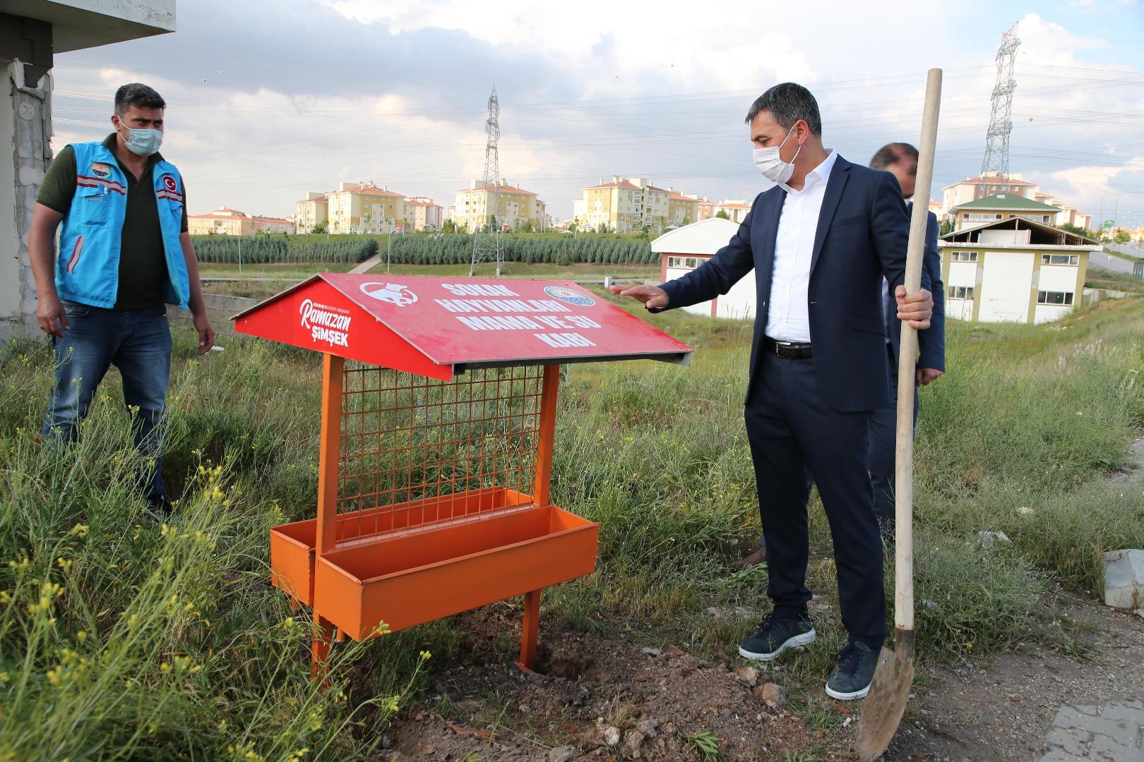 Gölbaşı Belediyesi Sokak Hayvanları için İki Projeyi Hayata Geçiriyor…