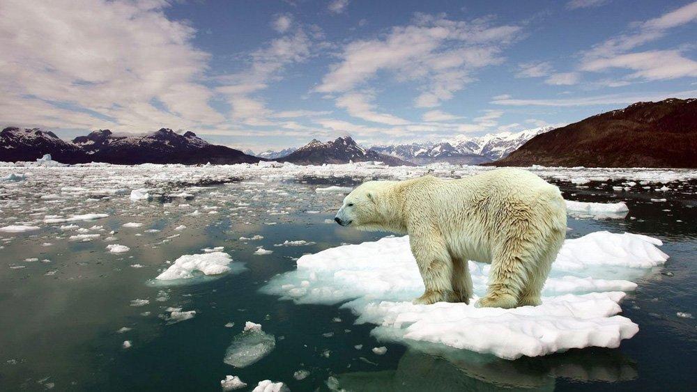 Küresel ısınma felaketine karşı ortak çağrı