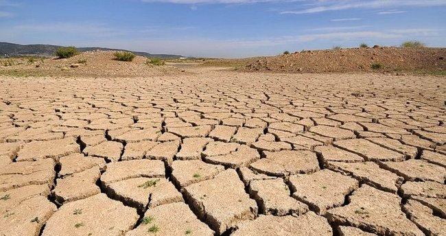 Türkiye yılda 750 milyon ton toprak kaybediyor