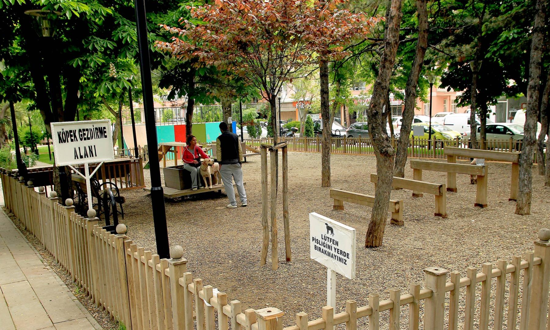 Çankaya parklarında köpeklere de yer var